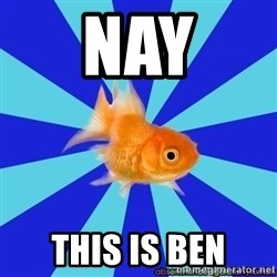 Absentminded Goldfish - Nay this is ben