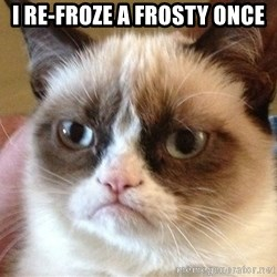 Angry Cat Meme - I re-froze a frosty once