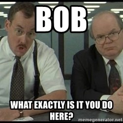 Office space - Bob What exactly is it you do here?