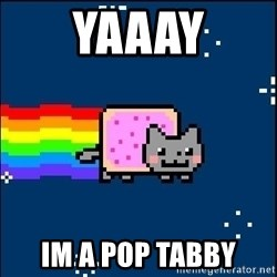 Irresponsible Nyan Cat - yaaay im a pop tabby