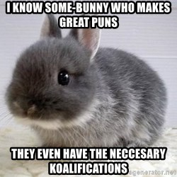 ADHD Bunny - i know some-bunny who makes great puns  they even have the neccesary koalifications