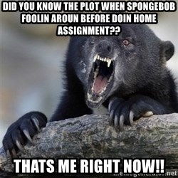 Insane Confession Bear - did you know the plot when spongebob foolin aroun before doin home assignment?? thats me right now!!