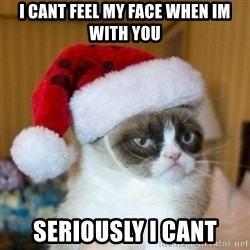 Grumpy Cat Santa Hat - i cant feel my face when im with you seriously i cant