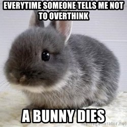 ADHD Bunny - everytime someone tells me not to overthink a bunny dies