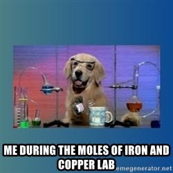 Chemistry Dog -  me during the moles of iron and copper lab
