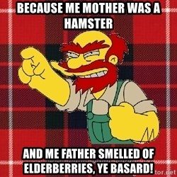 Angry Scotsman - because me mother was a hamster and me father smelled of elderberries, ye basard!