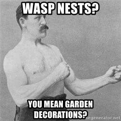 overly manlyman - wasp nests? you mean garden decorations?