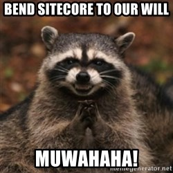 evil raccoon - Bend Sitecore to our will Muwahaha!
