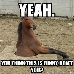 Hole Horse - Yeah. You think this is funny, don't you?