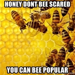 Honeybees - Honey dont bee scared you can bee popular
