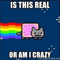 Irresponsible Nyan Cat - Is this real or am i crazy