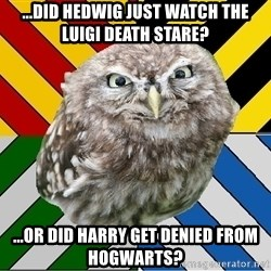 JEALOUS POTTEROMAN - ...did hedwig just watch the luigi death stare? ...or did Harry get denied from Hogwarts?