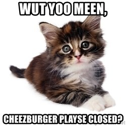 fyeahpussycats - wut yoo meen, Cheezburger playse closed?