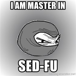 Ninja guy - I am master in  Sed-fu