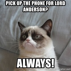 Grumpy cat good - pick up the phone for Lord Anderson? Always!