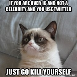 Grumpy cat good - if you are over 16 and not a celebrity and you use twitter just go kill yourself