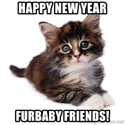 fyeahpussycats - HAPPY NEW YEAR FURBABY FRIENDS!