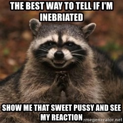 evil raccoon - the best way to tell if i'm inebriated show me that sweet pussy and see my reaction