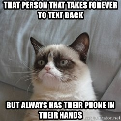 Grumpy cat good - That person that takes forever to text back but always has their phone in their hands