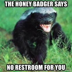 Honey Badger Actual - The honey badger says no restroom for you