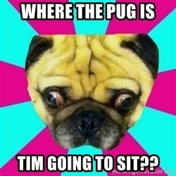 Perplexed Pug - Where the PUG is Tim going to sit??