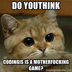 Do you think this is a motherfucking game? - do youthink  codingis is a motherfucking game?