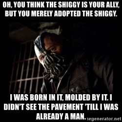 Bane Meme - Oh, you think the shiggy is your ally, but you merely adopted the shiggy. I was born in it, molded by it. I didn't see the pavement 'till I was already a man.