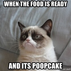 Grumpy cat good - When the food is ready and its poopcake
