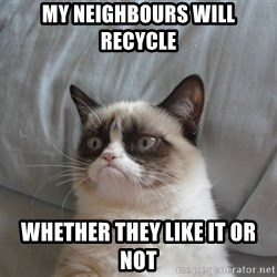 Grumpy cat good - my neighbours will recycle whether they like it or not