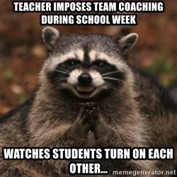 evil raccoon - Teacher imposes team coaching during school week Watches students turn on each other...