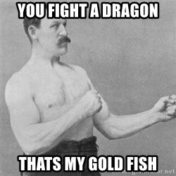 overly manlyman - you fight a dragon thats my gold fish