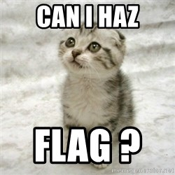 Can haz cat - CAN I HAZ FLAG ?