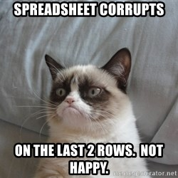 Grumpy cat good - Spreadsheet corrupts on the last 2 rows.  Not happy.