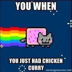 Irresponsible Nyan Cat - YOU WHEN YOU JUST HAD CHICKEN CURRY