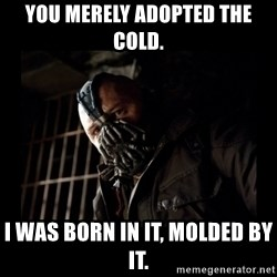 Bane Meme - You merely adopted the cold. I was born in it, molded by it.