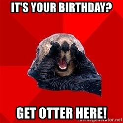 Otter Failure - It's your Birthday? Get Otter Here!