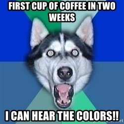 Spoiler Dog - First cup of coffee in two weeks I can hear the colors!!