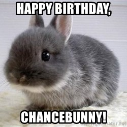 ADHD Bunny - HAPPY BIRTHDAY,  CHANCEBUNNY!