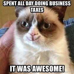 Happy Grumpy Cat 2 - Spent all day doing business taxes it was awesome!