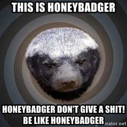 Fearless Honeybadger - this is honeybadger honeybadger don't give a shit!                     be like honeybadger
