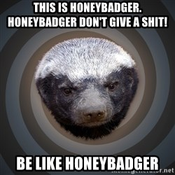 Fearless Honeybadger - this is honeybadger.  honeybadger don't give a shit! be like honeybadger