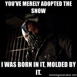 Bane Meme - You've merely adopted the snow I was born in it, molded by it.