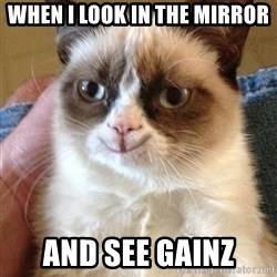 Grumpy Cat Happy Version - When I look in the mirror and see Gainz