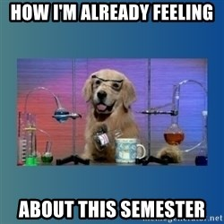 Chemistry Dog - How I'm already feeling  about this semester