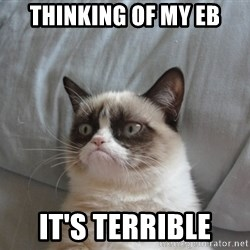 Grumpy cat good - Thinking of my EB it's terrible