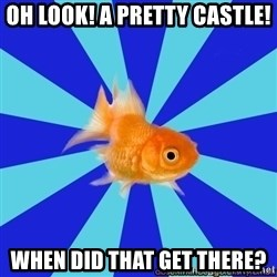 Absentminded Goldfish - Oh look! A pretty castle! When did that get there?