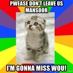 Cute Kitten - PWEASE DON'T LEAVE US MANSOOR I'm GONNA MISS WOU!