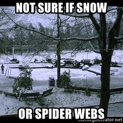 UVIC SNOWDAY - not sure if snow or spider webs