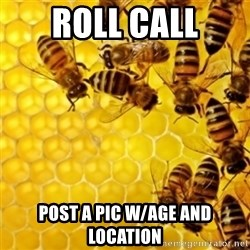Honeybees - Roll Call Post a pic w/age and location