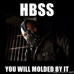 Bane Meme - HBSS you will molded by it